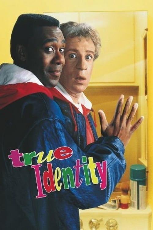 Affiche Poster double identité true identity disney touchstone