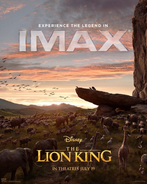 Affiche Poster roi lion king disney