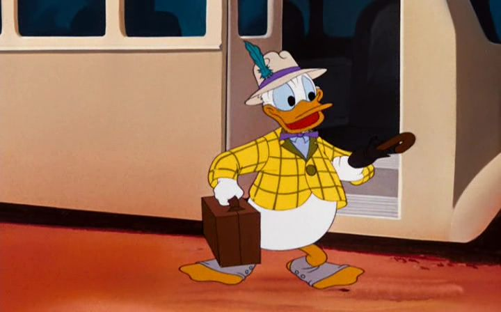 Image donald cheval dude duck disney