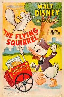 Affiche Poster donald écureuil volant squirrel flying disney