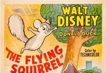 Affiche Poster donald écureuil volant squirrel flying disney