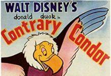 Affiche Poster oeuf condor géant donald contrary disney
