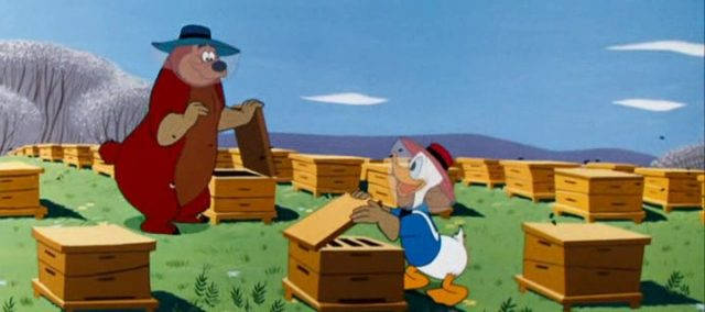 Image donald abeilles beeze bear disney