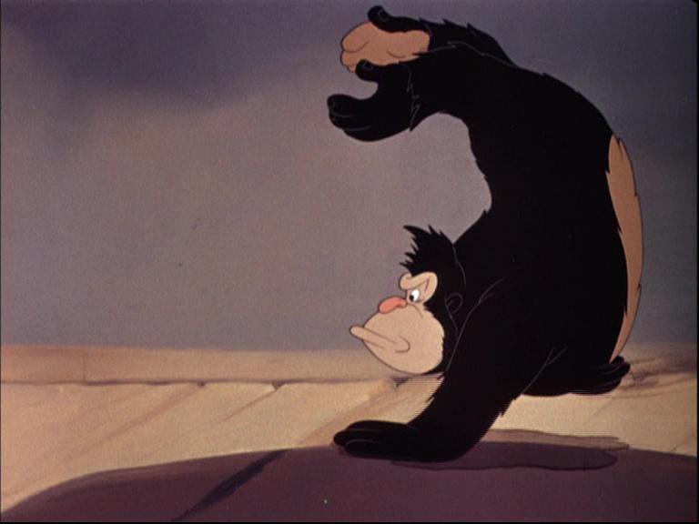 Image donald gorille gorilla disney