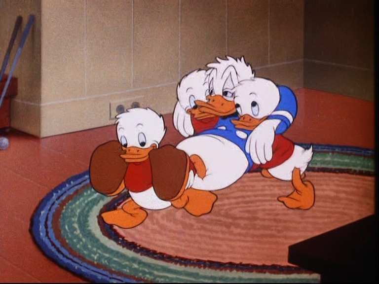 Image donald sortie off day disney