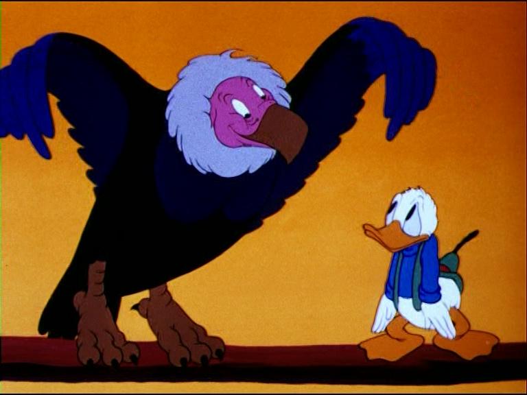 Image oeuf condor géant donald contrary disney