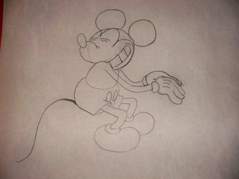 Artwork frotte pique cactus kid disney mickey