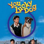 affiche poster vie chien chateau lucky dog disney channel