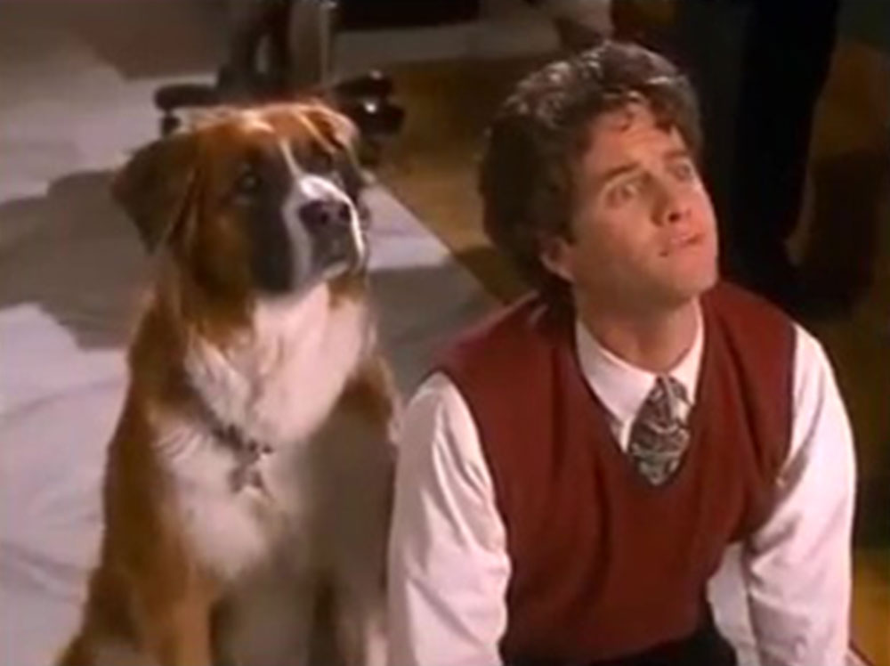 Image vie chien chateau lucky dog disney channel