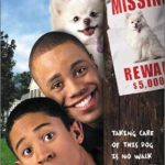 Affiche Poster chien envahissant hounded disney channel