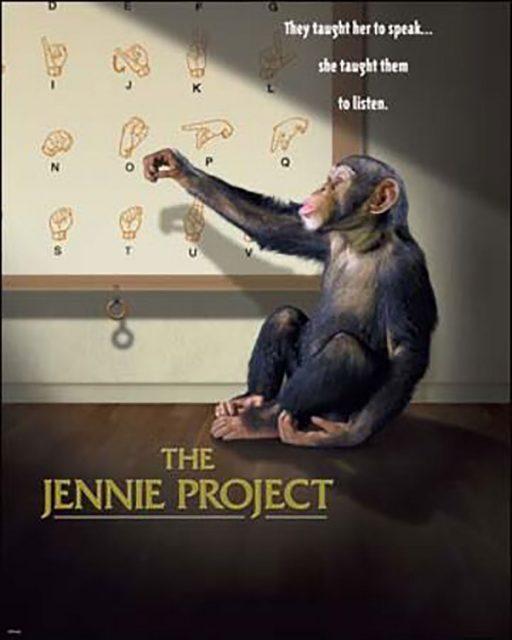 Affiche poster jennie project disney channel