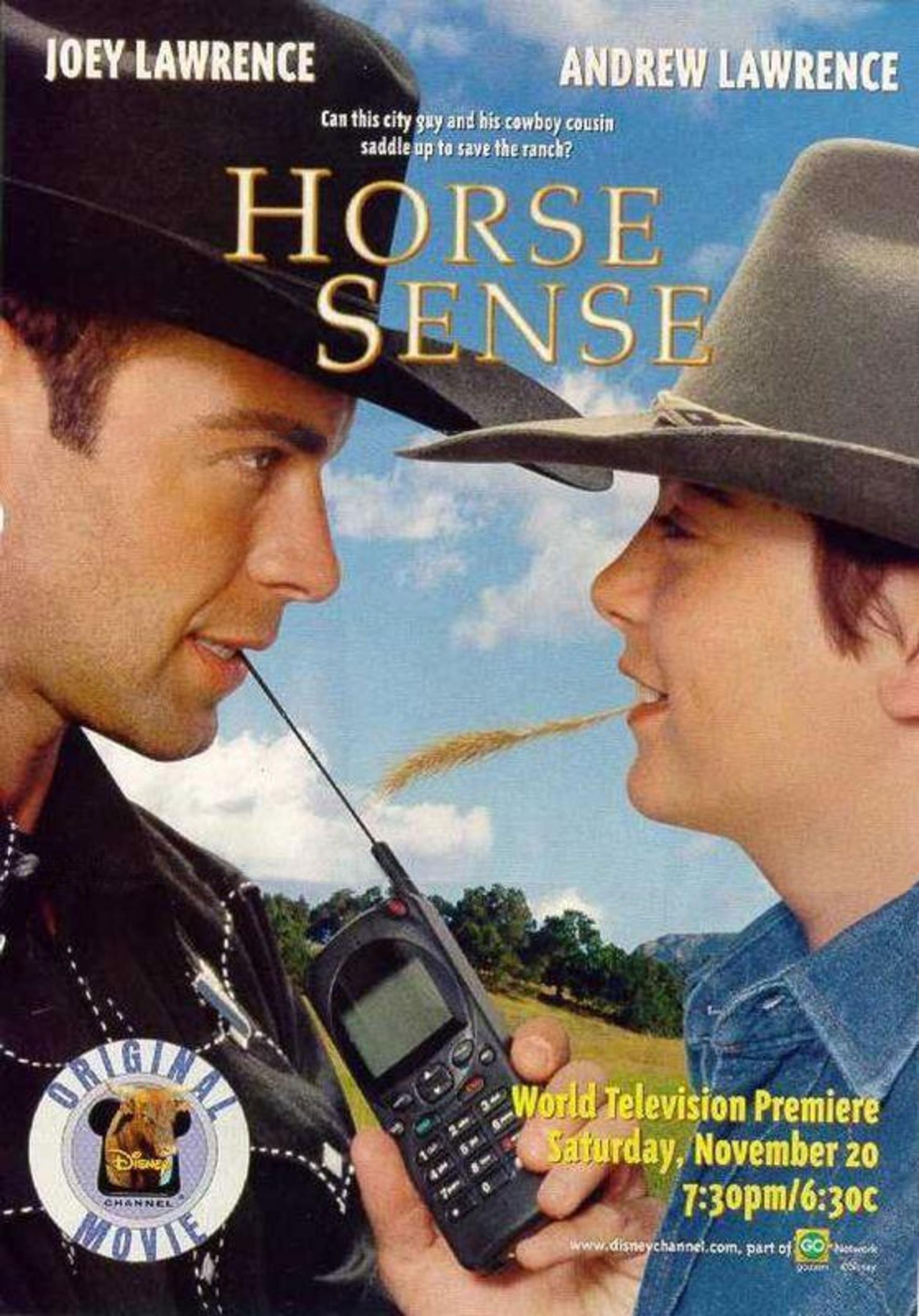 Affiche poster ranch bonheur horse sense disney channel