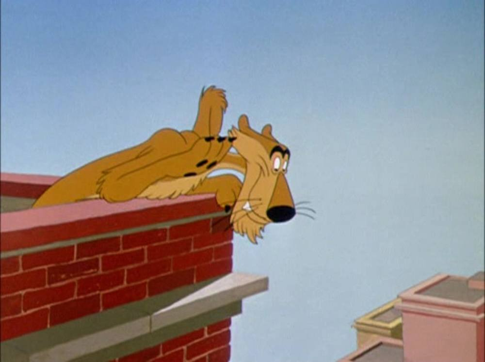 image dingo lion down goofy disney