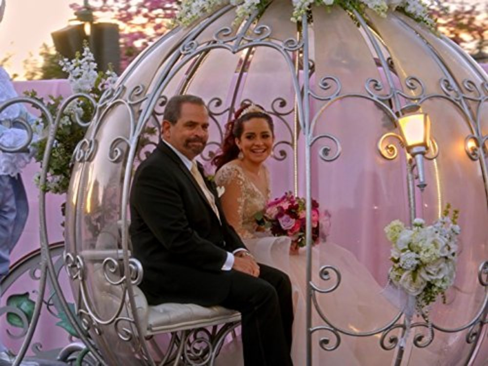 image disney fairy tale weddings plus