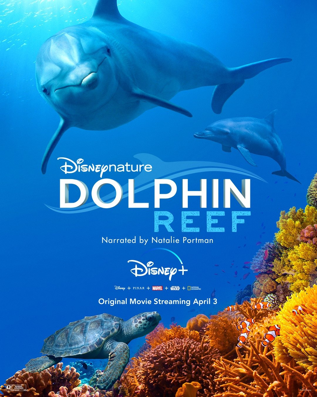 affiche dolphin reef disney+ disneynature