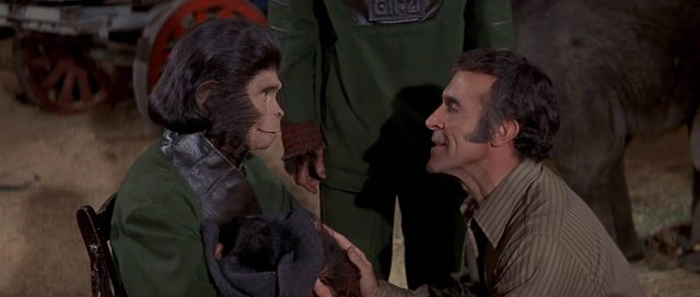 image évadés planète singes escape planet apes disney fox