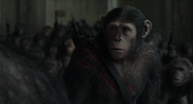 image planète singes affrontement daw planet apes disney fox