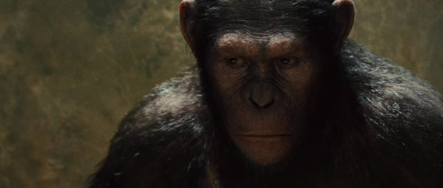 image planete singes origines rise planet apes disney fox