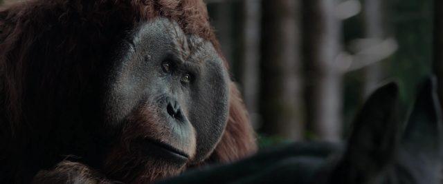réplique quote planète singes suprématie planet apes war disney fox