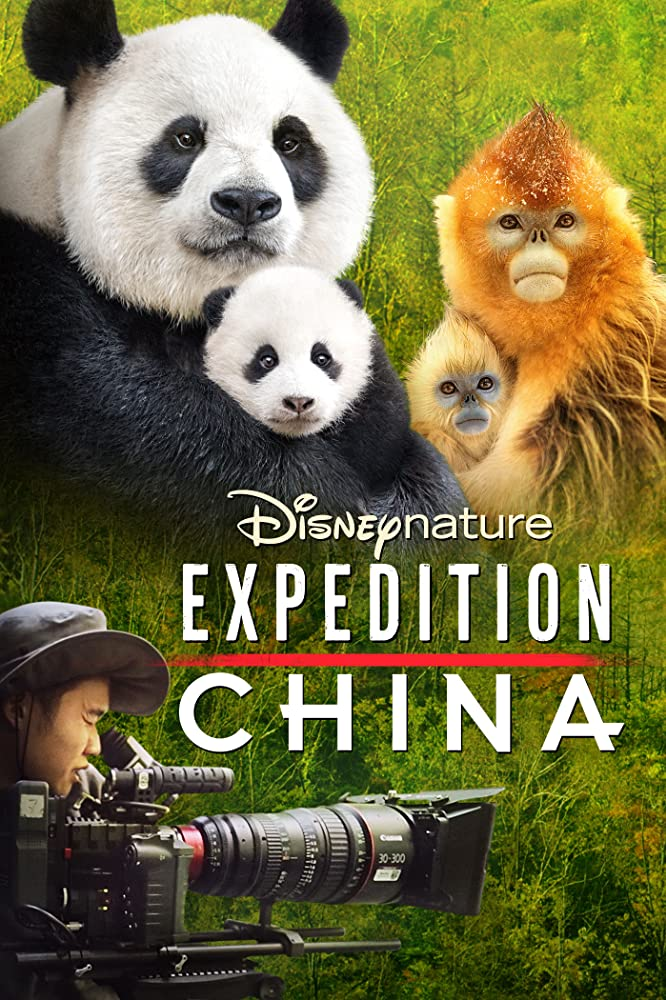 affiche poster nés chine histoires tournage expedition china disney