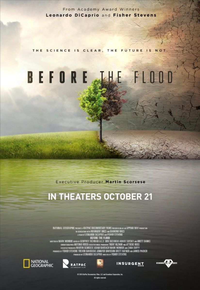 affiche poster avant déluge before flood disney national geographic