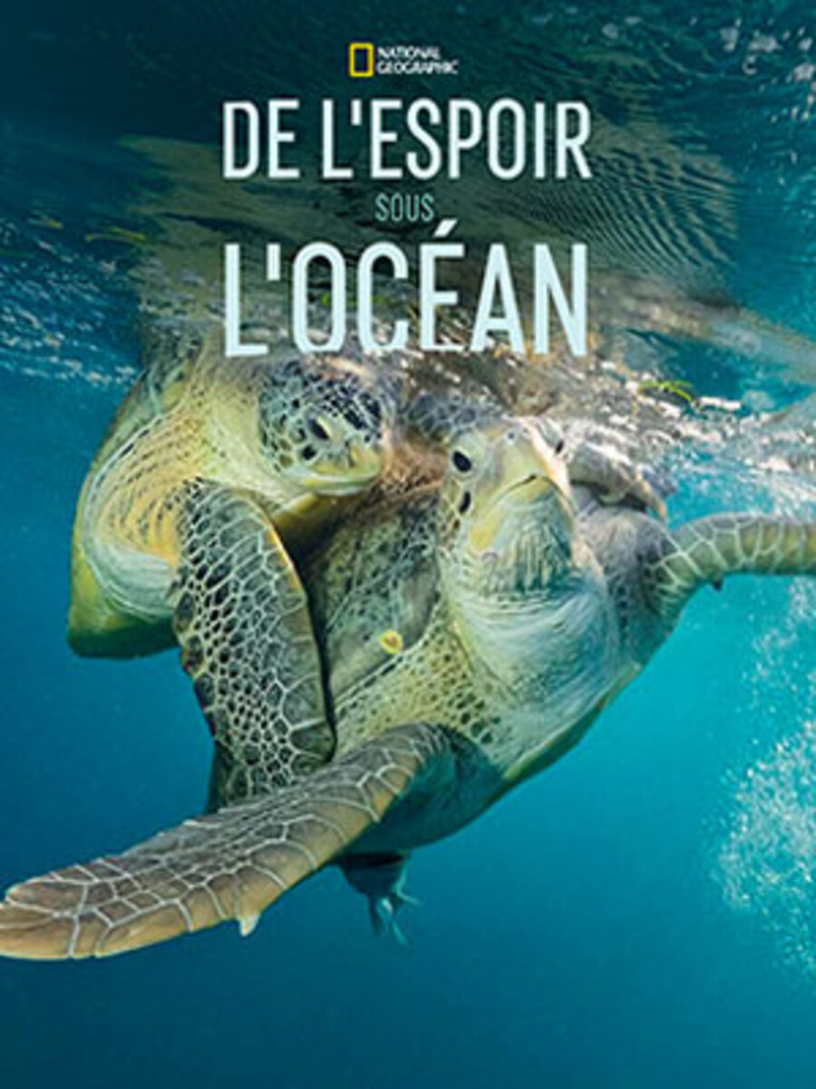 affiche poster espoir océan hop under america treasure disney nat geo