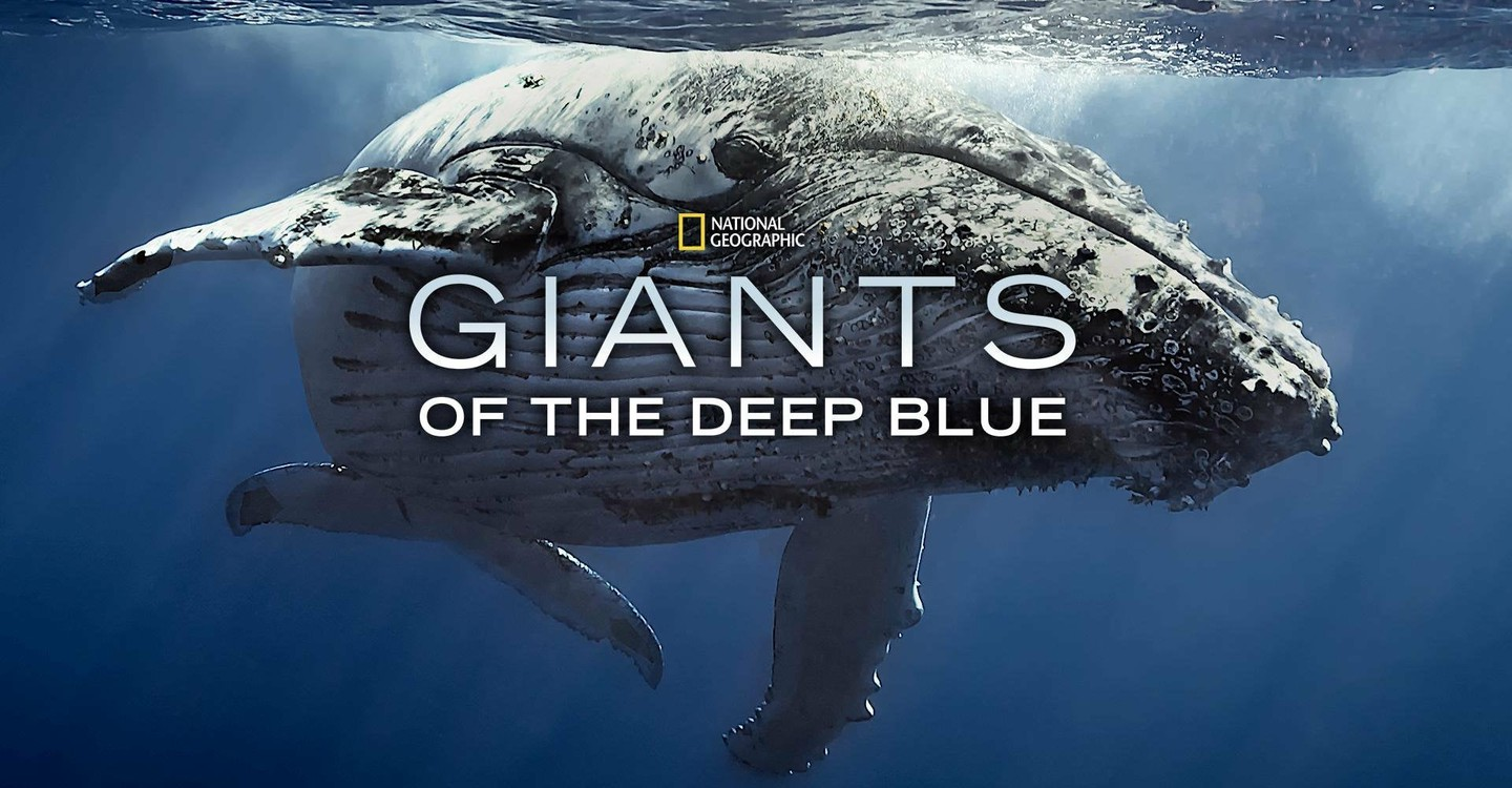 affiche poster géants mers giants deep blue nat geo disney