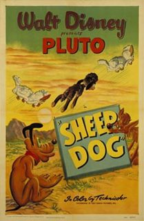 affiche poster pluto chien berger sheep dog disney04