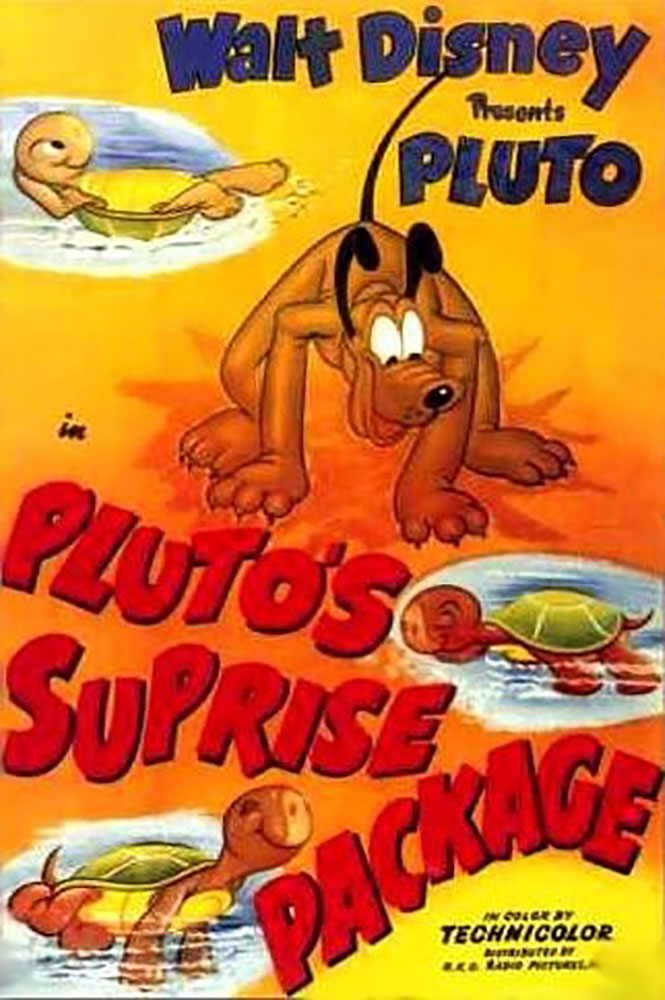 affiche poster pluto tortue surprise package disney