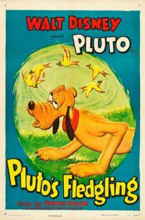 affiche poster protege plut fledgling disney