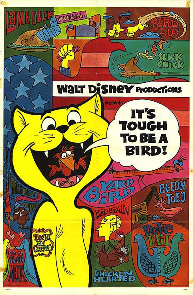 affiche poster drôle être oiseau tough be bird disney