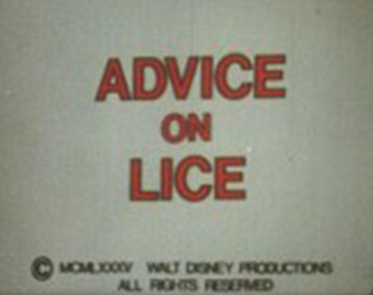 affiche poster advice lice disney