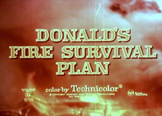 affiche poster donald fire survival plan disney