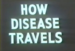 affiche poster how disease travel disney