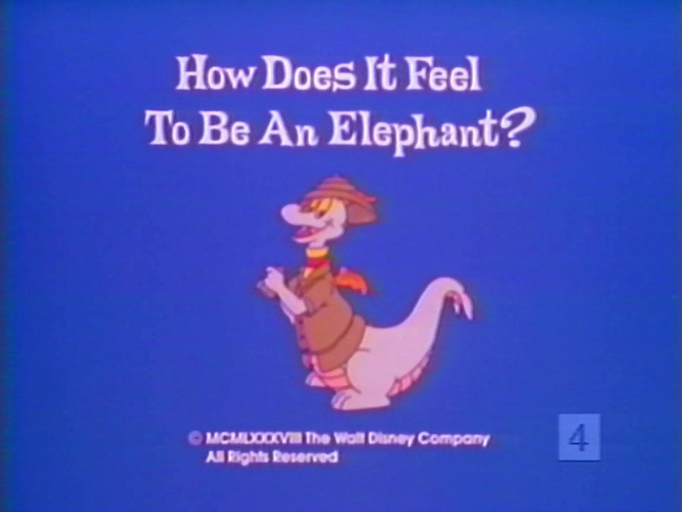 affiche poster how feel elephant disney