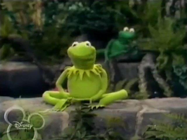 image frog prince disney muppets