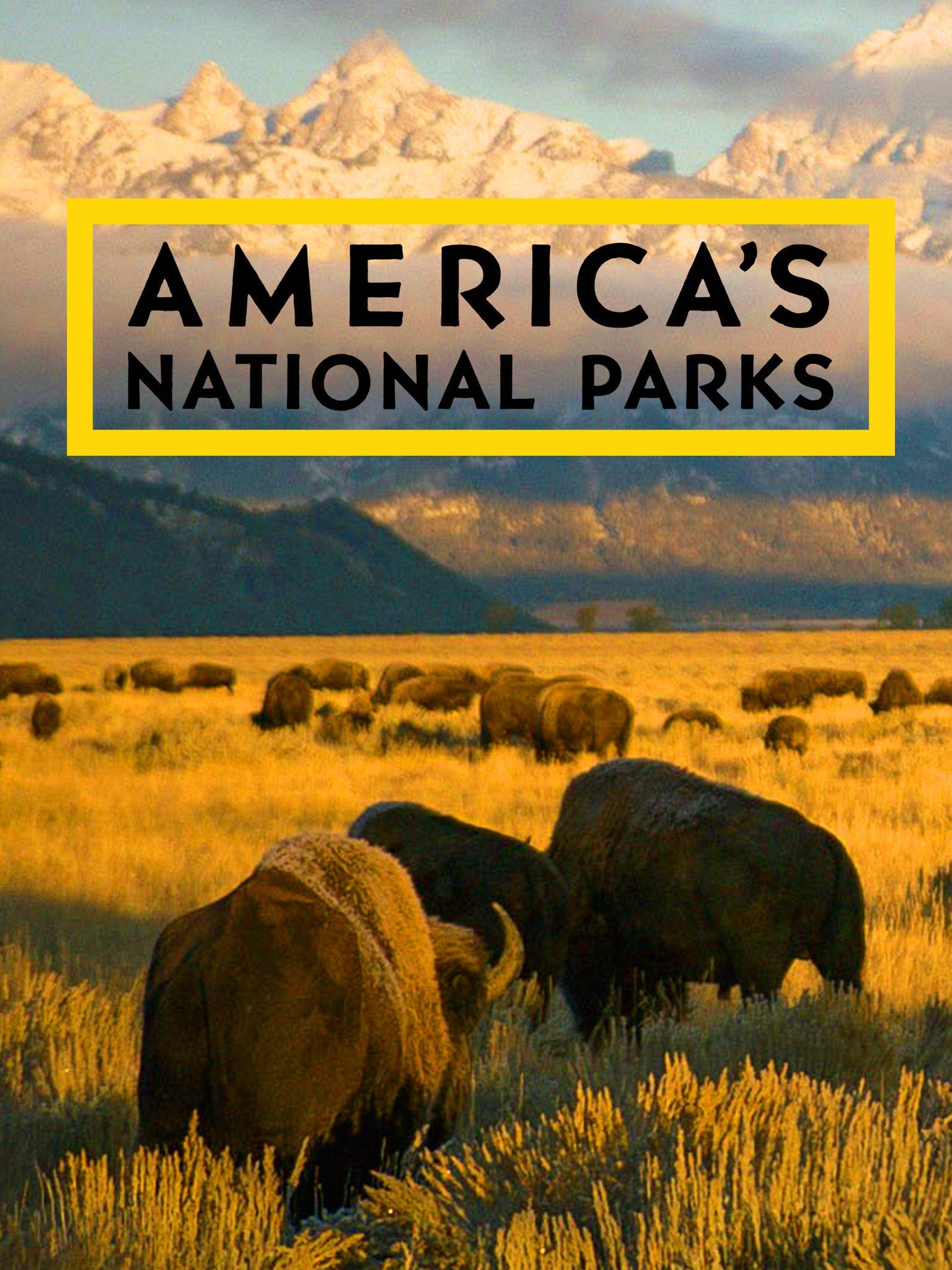 affiche poster coeur parcs nationaux amerique park america national geo disney