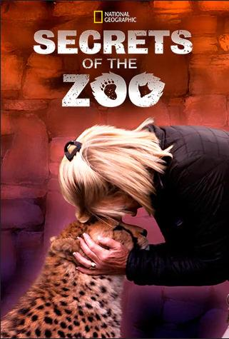 affiche poster coeur secrets zoo disney nat geo
