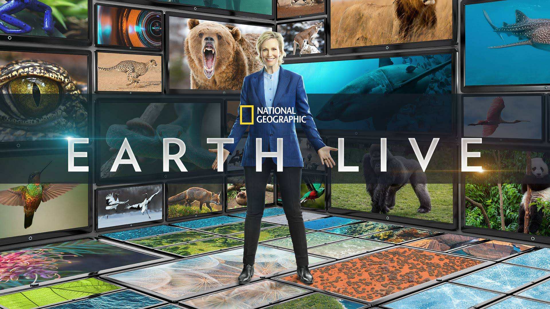affiche poster earth live disney nat geo