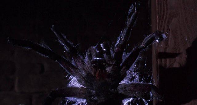 image arachnophobie disney