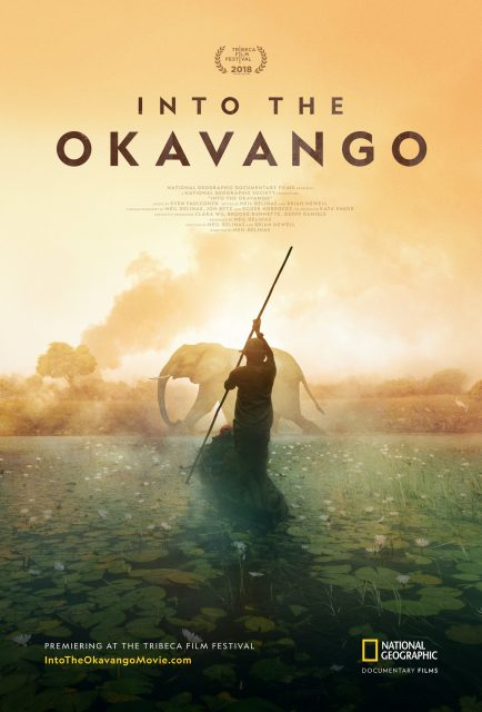 affiche poster coeur into okavango disney nat geo