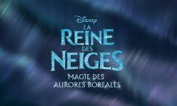 affiche poster reine neiges magie aurores boréales frozen northern lights disney