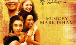bande originale soundtrack ost score secret lily owens secret life bee disney fox